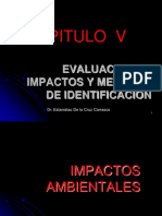 Capitulo v.-evaluacion de Impactos y Metodos de Identificacion(Ultimo)