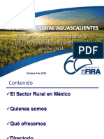 1 Presentacion Fira Aguascalientes 041015
