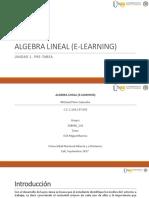 359684561-MichaelPintoC-Grupo141-Presentacion-Pre-Tarea.pptx