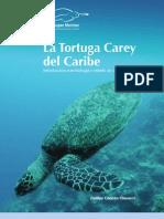 Monografia Carey del Caribe - WWF D Chacon 2005