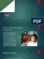 NEC.pptx