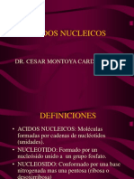Clase 13 Acidos Nucleicos
