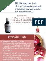 Pengaplikasian Herbisida Fixx