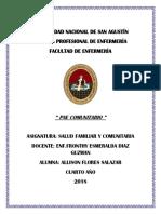 Pae Comunitario1docx