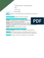 Enfermedades Bacterianas de Piel y Tejidos Blandos