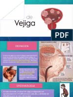Neoplasia Urologica