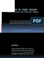 Review of Head Injury