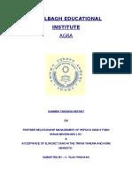 18048055-Pepsi-marketing-summer-training-report.doc