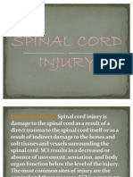 Spinal Power Point