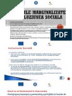 Incluziunea Sociala Si Grupurile Marginalizate
