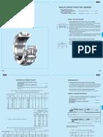 NSK_CAT_E1102m_B234-243.pdf