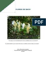 FloresdeBach2.pdf