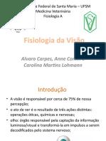 Fisiologia Da Visão