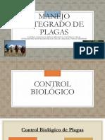 Control-Biologico-Fisico-Mecanico-Cultural-y-Legal-de-Plagas..pptx