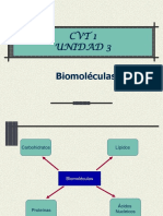 4 2biomoleculas Ppt 100709080802 Phpapp01