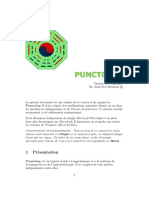 Punctolog 6.0