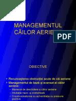 Management-cai-aeriene.pdf