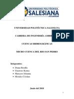 PLAN-DE-MANEJO-DE-MICROCUENCA-SAN-PEDRO (2).docx