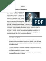 ANEXOS Objt Conclus y Cuestion 8 y 9 y 10