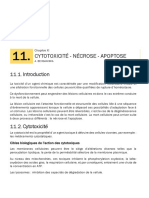 Cytotoxicité, Nécrose, Apoptose