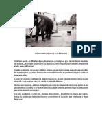 LOS ELEFANTES DE CIRCO Y LA LIMITACION.docx