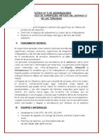 PRACTICA N° 5 DE MICROBIOLOGIA EVELIN.docx