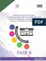 GUIA PARA ELABORACION DE PROYECTOS.pdf
