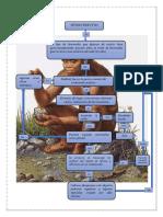 Diagrama Flujo Cuento