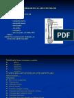 Diagnostic Radioimagistic Al Afectiunilor Osteoarticulare