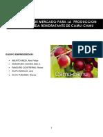 ESTUDIO DE MDO BEBIDA REHIDRATANTE DE CAMU - CAMU.docx
