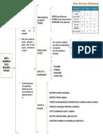 Resumen Clase de Enamoramiento Clase de Mg Geraldine