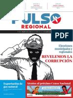 Pulso Regional N° 12