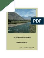 Sanidades y Milagros - Nestor Figueroa