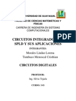 338487808-CI-LSI-y-SPLD.docx