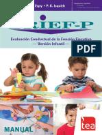BRIEF-P_extracto web.pdf