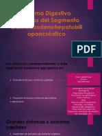 Sistema Digestivo Síntomas del Segmento Gastroduidenohepatobiliopancréatico.pptx