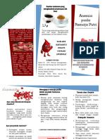 347354 Leaflet Anemia