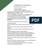 informe 7 y 8 de embrio.docx