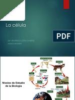 2.-Caracteristicas-de-la-celula.ppt