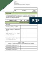 Pauta de Evaluación No Estandarizada