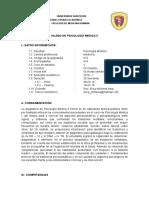 SILABO PSICO.doc
