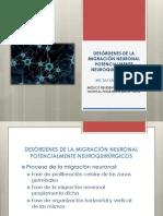 Desórdenes de La Migración Neuronal Potencialmente Neuroquirúrgicos