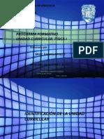 Programa Fisica I Gabriela Prieto