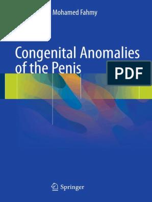 penis leu de mare