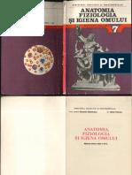 Anatomia_VII_1989.pdf