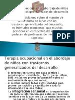 rol_terapia_ocupacional_Barberio.ppt