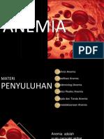 Kunlap Anemia Revisi