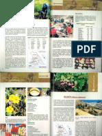 OCA (Oxalis tuberosa) (11).pdf