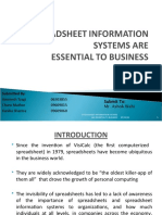 SPREADSHEET INFORMATION SYSTEMS ARE ESSENTIAL TO BUSINESS