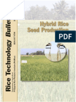 Hybrid Rice Seed Production